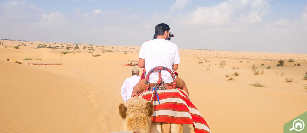 Dubai desert safari is a perfect idea